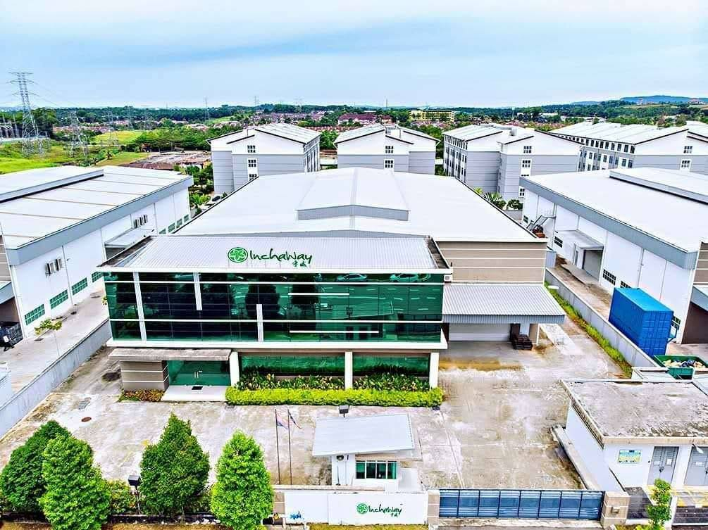 Inchaway Singapore Sachi Inchi Factory