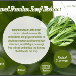 27 Pandan Leaf Extract in Cellpro