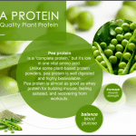 38 Pea Protein in Cellpro